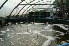 Kaltwasseranlage_Bebertal