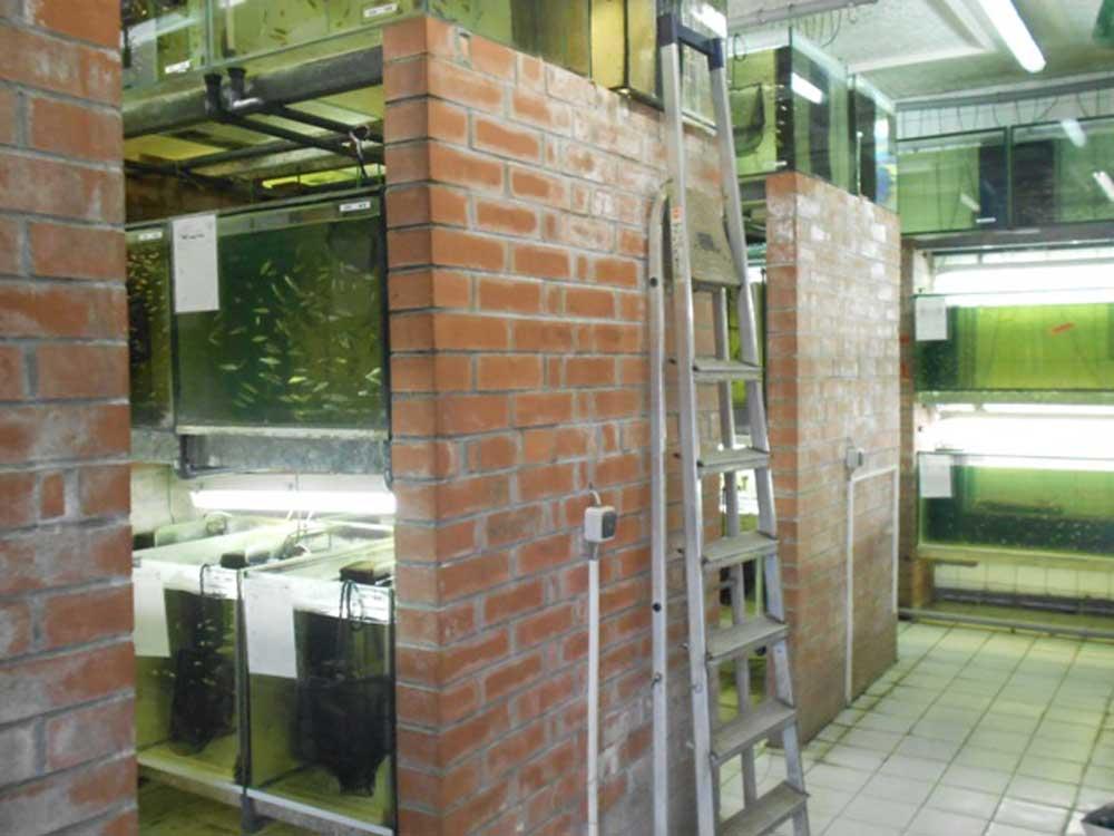 Warmwasseranlage_Haldensleben_3